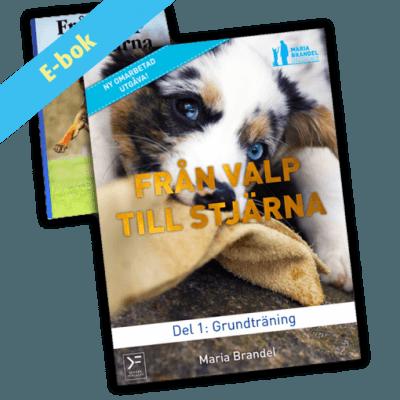 E-bok: Från valp till stjärna