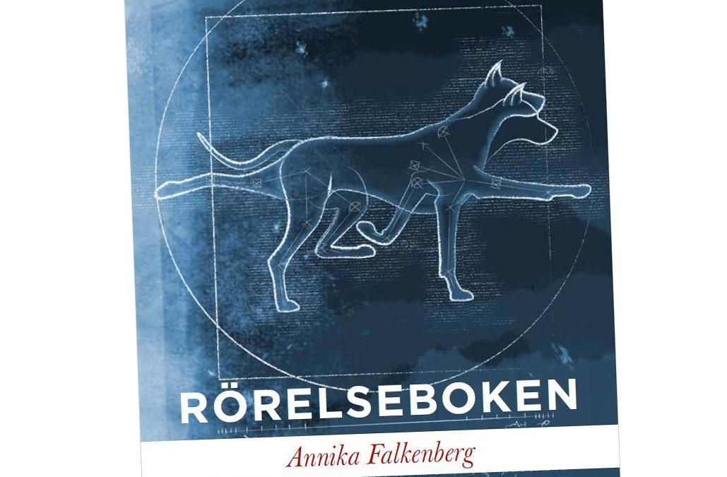 Clinic med Annika Falkenberg: Rörelseanalys och grundträning