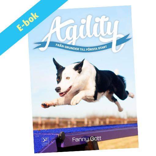 Agility – Från grunder till första start – ebok