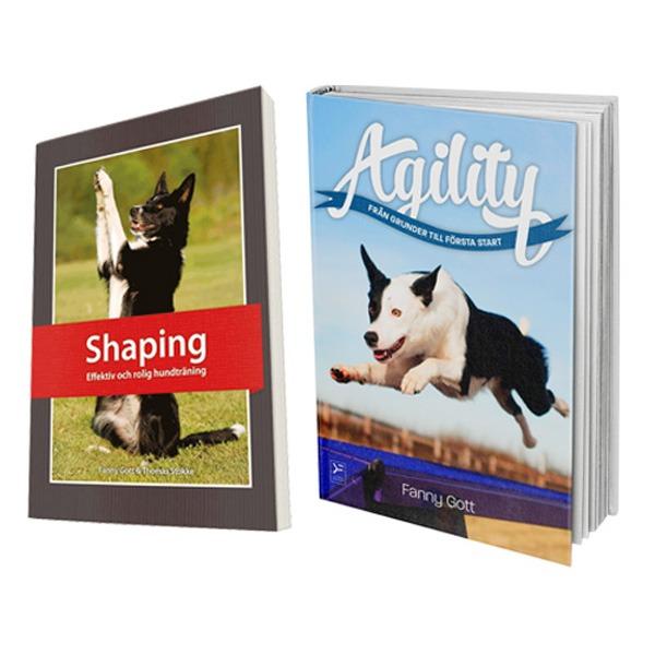 Paket: Agility och Shaping