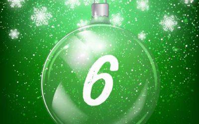 Julkalender lucka 6: Så lär du din hund att bli buren