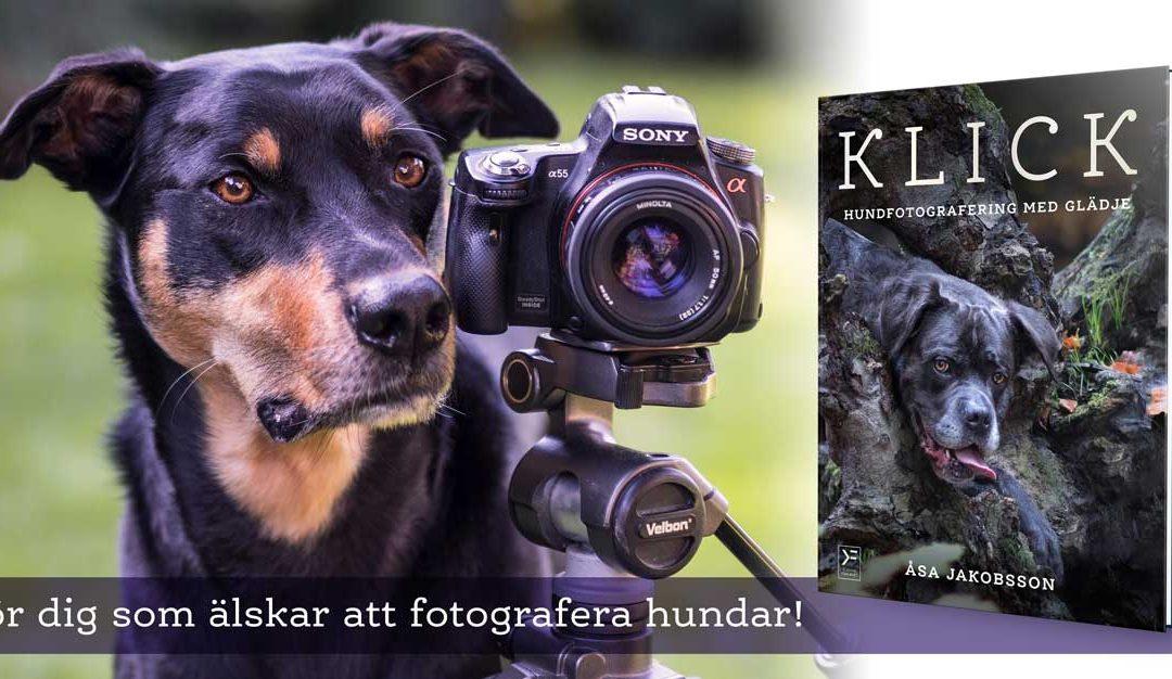 Månadens bok april: KLICK – hundfotografering med glädje – Åsa berättar