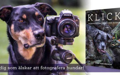 Lyssna på när Åsa Jakobsson pratar om hundfotografering