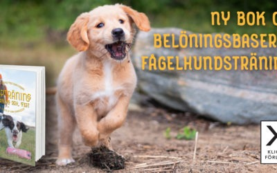 """Vinn boken """"Valpträning till vardag och fest – belöningsbaserad fågelhundsträning"""" till dig och en vän"""